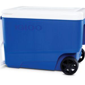 Wheelie Cool 2020-3